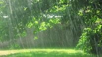 Rainnnn