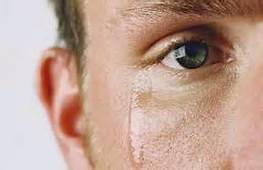 crying-shame-1